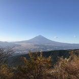 芦ノ湖スカイライン富士見台