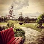 英国様式庭園 Q-COURT