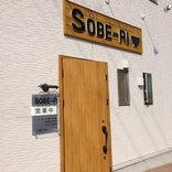 SOBE-PI