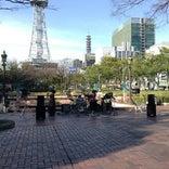 もちの木広場