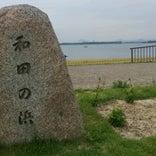 大津湖岸なぎさ公園