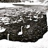 徳良湖オートキャンプ場