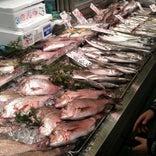角上魚類 相模原店