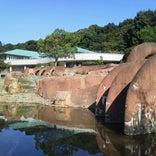 赤塚山公園 (ぎょぎょランド)