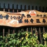 法林寺温泉