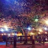 道後公園 (湯築城跡)