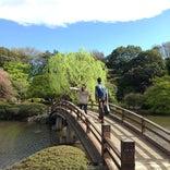 新宿御苑 日本庭園
