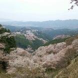 吉野山 中千本