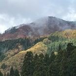 氷ノ山自然ふれあい館 響きの森