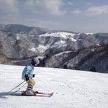 余呉高原リゾートヤップスキー場