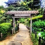 肥後細川庭園