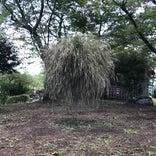 花の駅 美野原