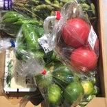 JA京都やましろ農産物直売所 山田荘店 愛菜館