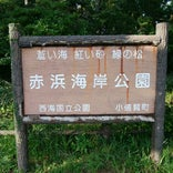 赤浜海岸公園