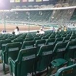 阪神甲子園球場 3塁SMBCシート