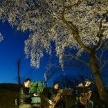 大阪市立大学付属植物園