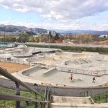 最上川ふるさと総合公園スケートパーク