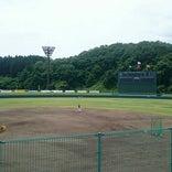 丹南総合公園野球場