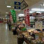 東金ショッピングセンター サンピア (SUNPIA)