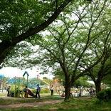 扶桑緑地公園
