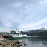 知床観光船