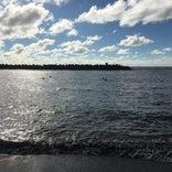 本荘マリーナ海水浴場