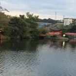 庄原上野池公園