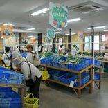 JA農産物直売所 愛情館