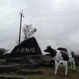 日光霧降高原 大笹牧場