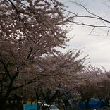 三沢市役所前公園