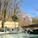 大子温泉保養センター 森林の温泉