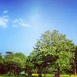 弓張平公園