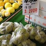 JA土浦 新治農産物直売所