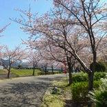 久留米百年公園
