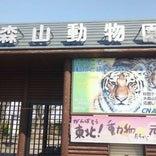 秋田市大森山動物園 ミルヴェ