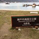 仙酔島 (Sensuijima)