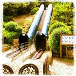 山城総合運動公園 (太陽が丘)