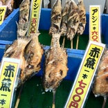 日本海鮮魚センター 本店