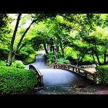 盛岡城跡公園 (岩手公園)
