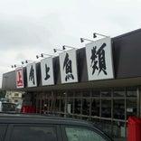 角上魚類 日野店