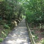 小幡緑地 本園