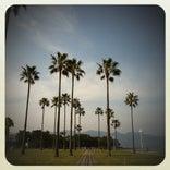上人ヶ浜公園