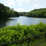 水の森公園キャンプ場