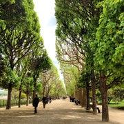 Botanical Garden of Paris (Jardin des Plantes)