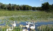 Lake Katherine Nature Ctr/Botanic Garden