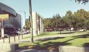 San Jose Arena Green East