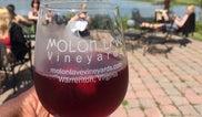 Molon Lave Vineyards