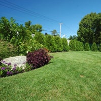 Jeff's Lawn & Landscaping Property Services, LLC