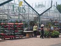 Hall's Garden Center & Florist
