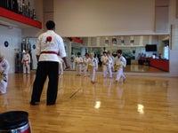 Mojo Dojo Karate